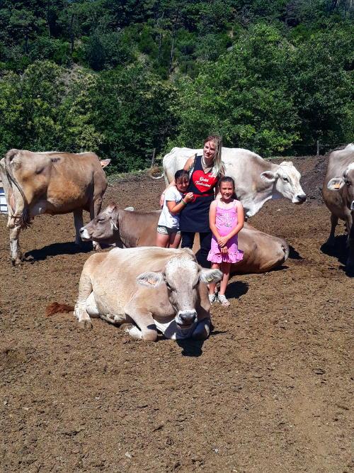 Mucche da latte della Curella insieme a Jenny e alle figlie di Davide Timossi
